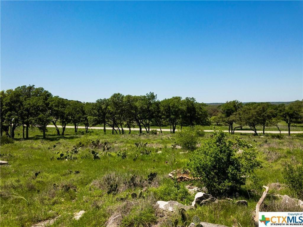 Single Family Homes for Sale at Lot 99 Axis Fredericksburg, Gillespie County, Texas 78624 United States