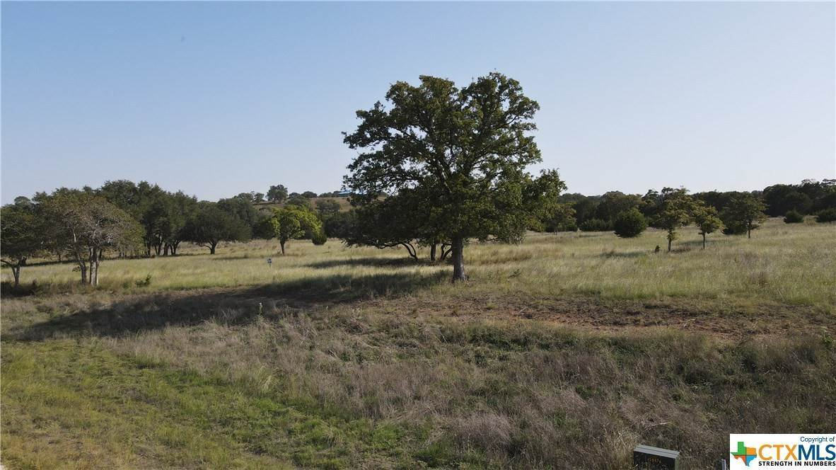 Single Family Homes for Sale at 60 Thriving Oak Fredericksburg, Gillespie County, Texas 78624 United States