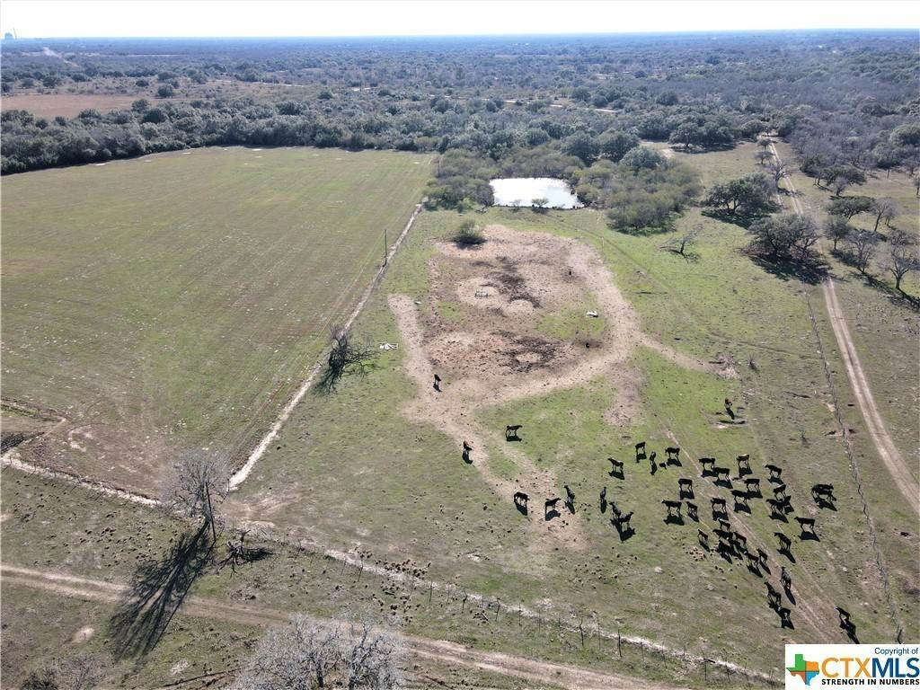 Farm and Ranch Properties for Sale at 000 Fannin Fannin, Goliad County, Texas 77960 United States